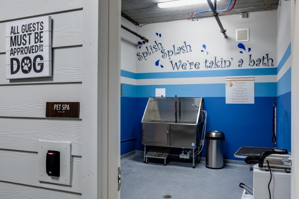 Dog wash station at The Barton in Clayton, Missouri