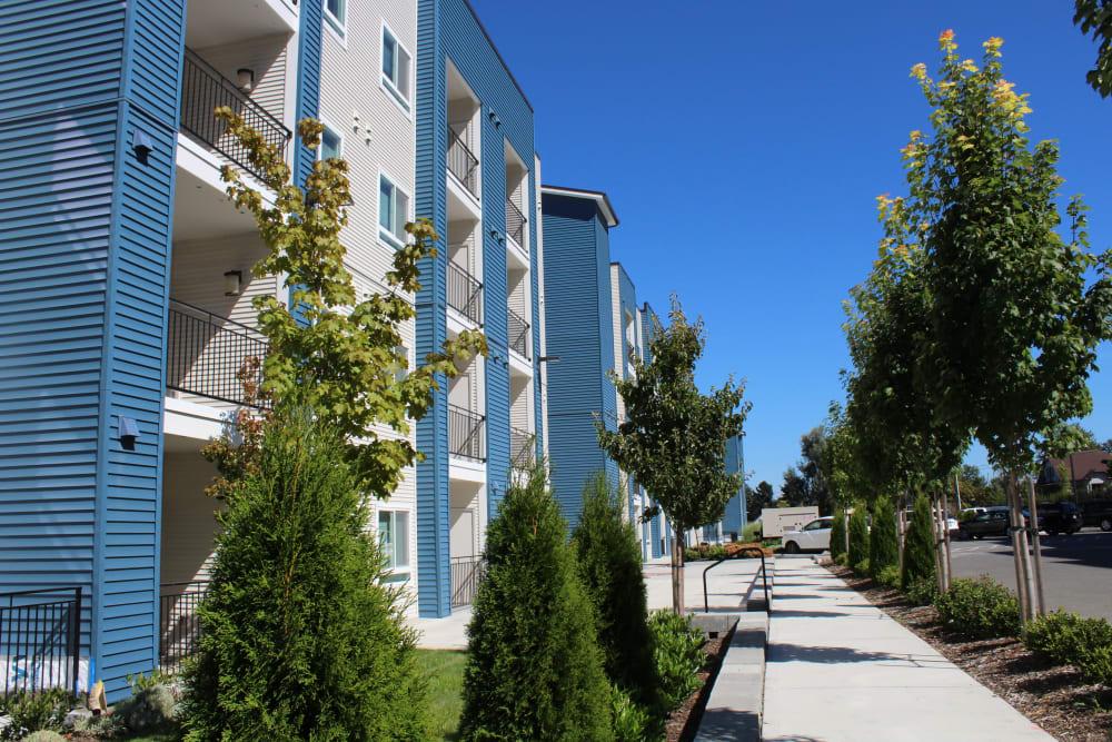 Exterior landscape and sidewalks at LARC at Burien in Burien, Washington