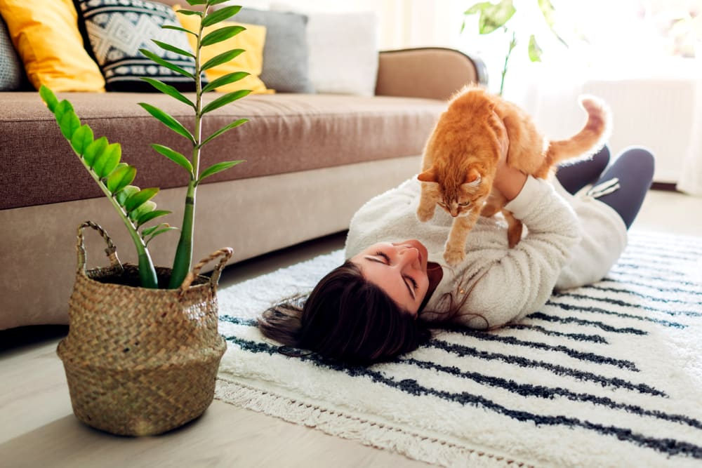 Resident with her cat loving their new life at Remington Cove Apartments in Apple Valley, Minnesota