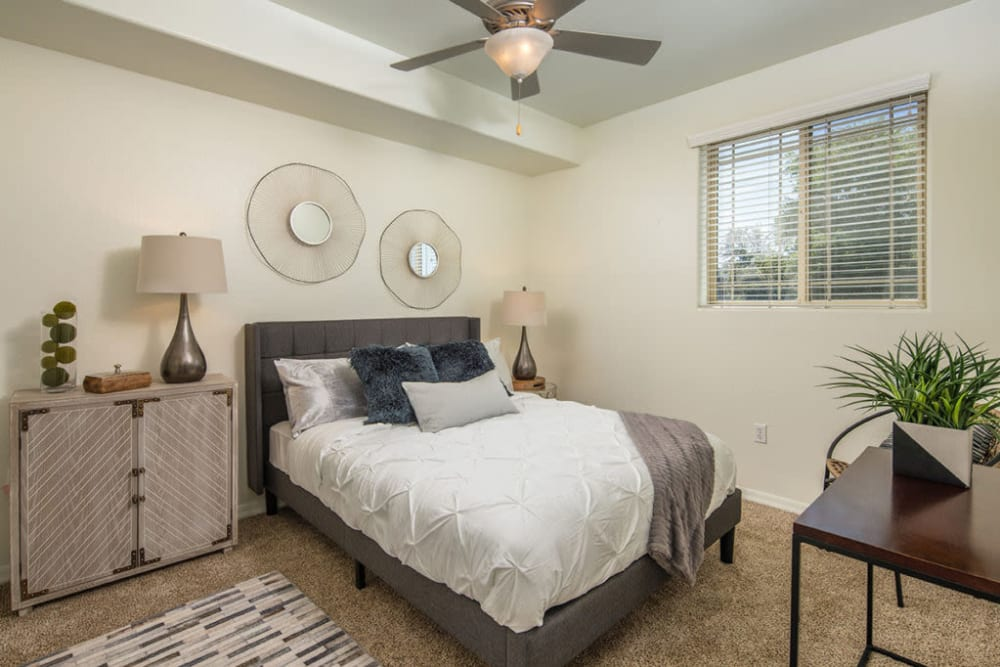 Large bedroom with blue accent pillows at The Fleetwood in Tempe, Arizona