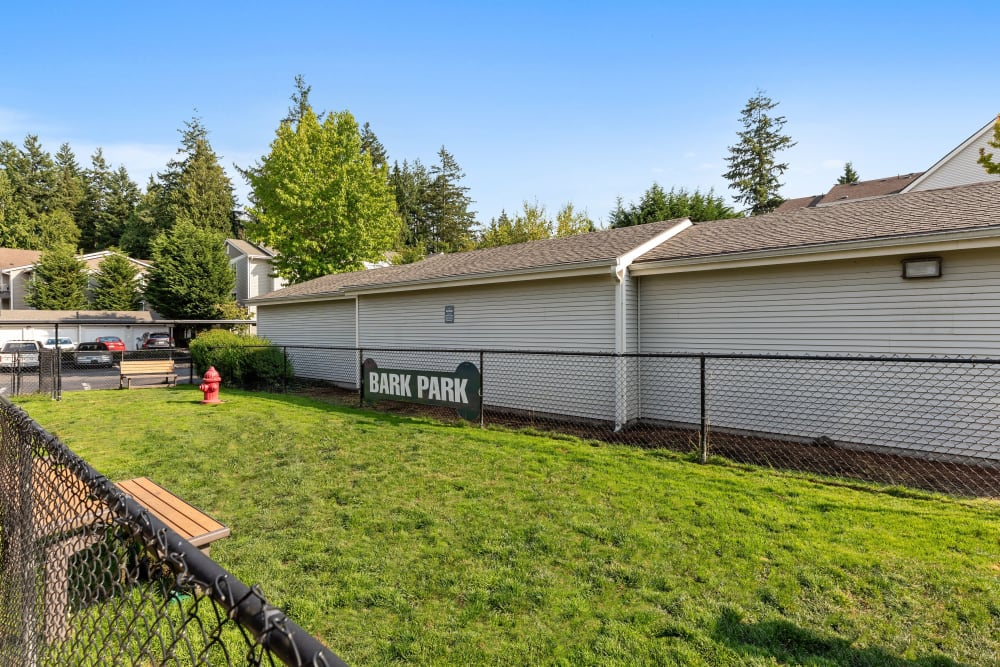 Have fun with your furry friend in the dog park at Wildreed Apartments in Everett, Washington