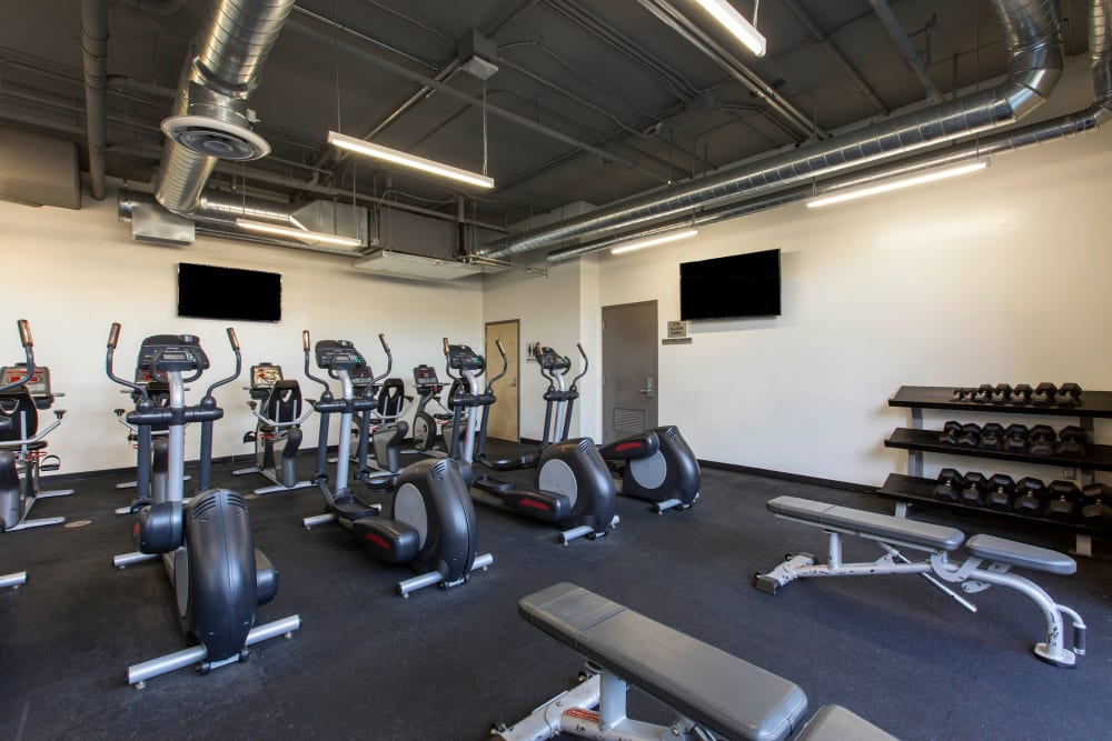 Onsite gym at ICON in Isla Vista, California