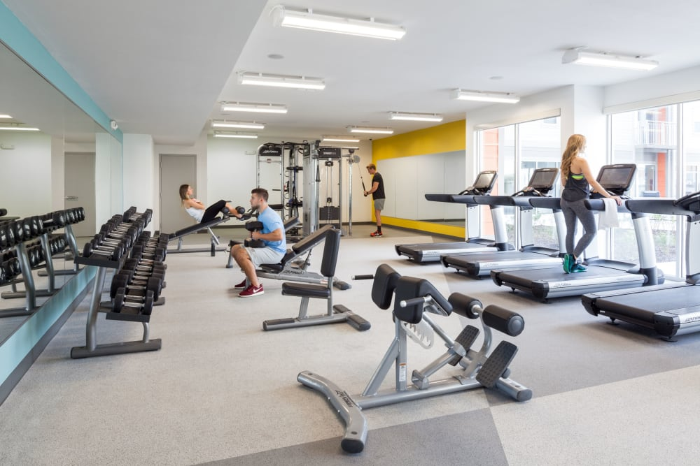 Fitness center at Onyx in Tallahassee, Florida