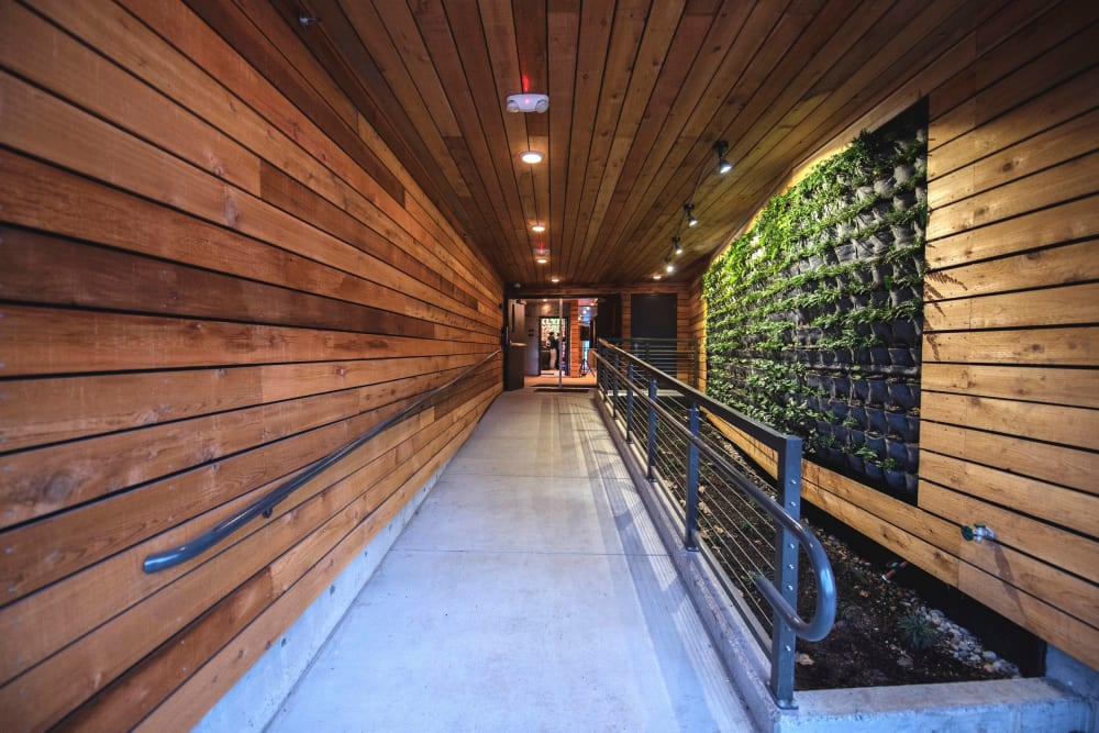 Interior hallway with reclaimed wood siding and a plant wall at Brooklyn Yard in Portland, Oregon