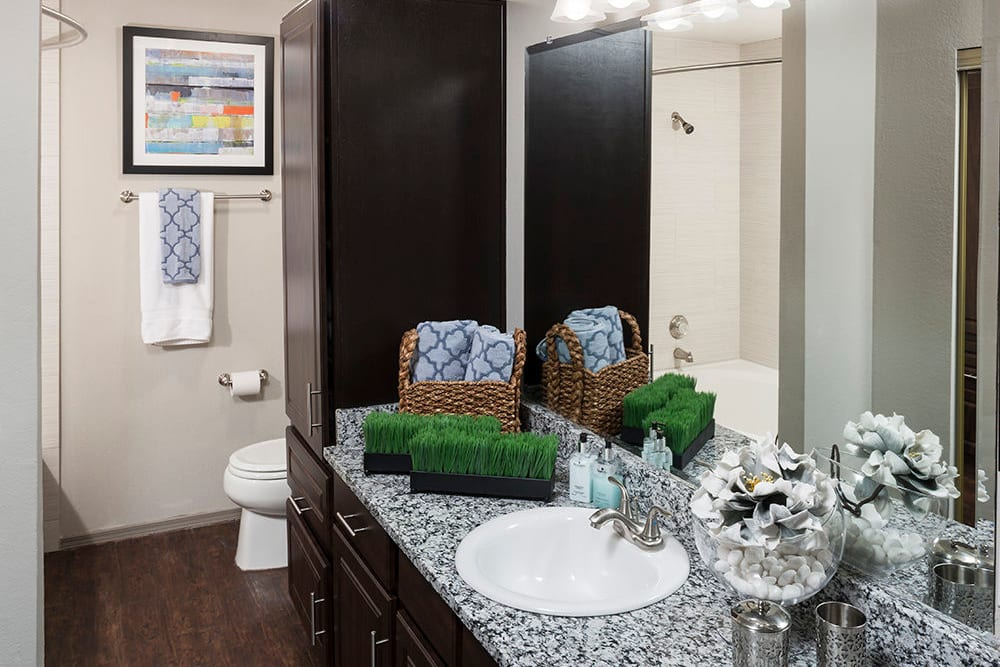 Granite countertop, a large vanity mirror, and extra storage in a model home's primary bathroom at Hyde Park at Montfort in Dallas, Texas