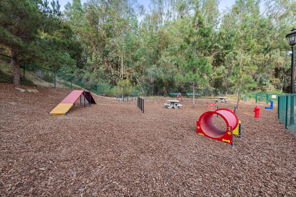 On-site dog park at Sofi Shadowridge in Vista, California