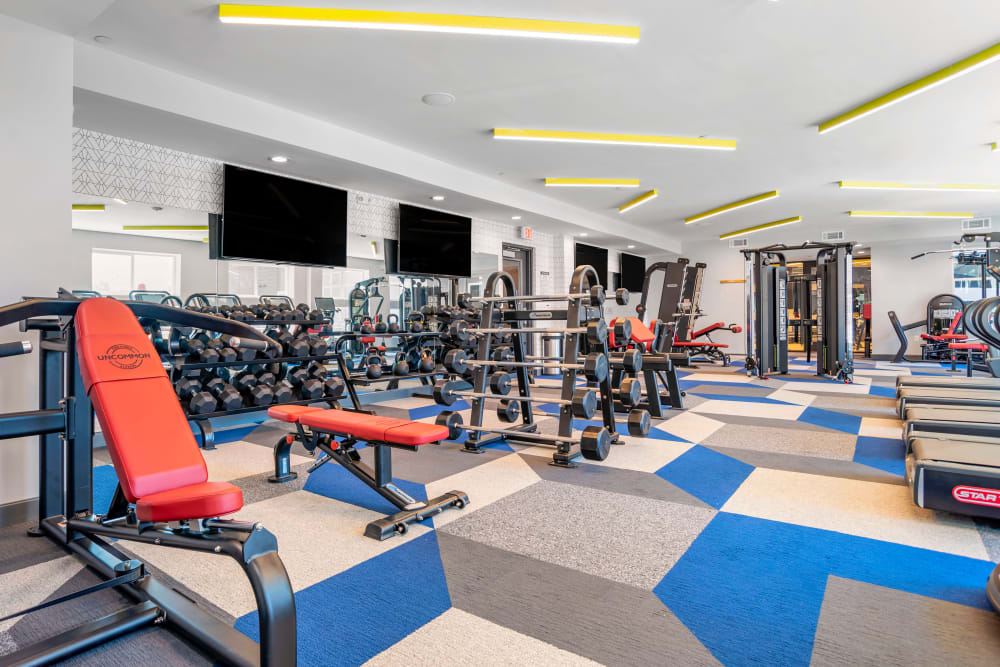 Well equipped fitness center at UNCOMMON Tuscaloosa in Tuscaloosa, Alabama