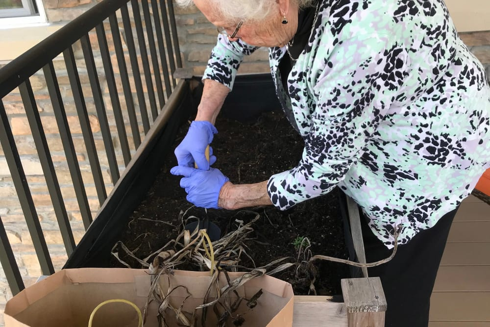 Resident planting a garden at Edencrest at Green Meadows in Johnston, Iowa