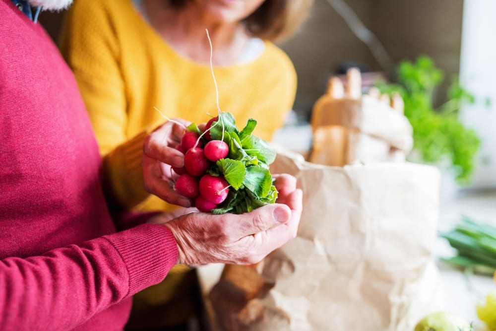 Residents with fresh ingredients at The Meridian at Brandon in Tampa, Florida