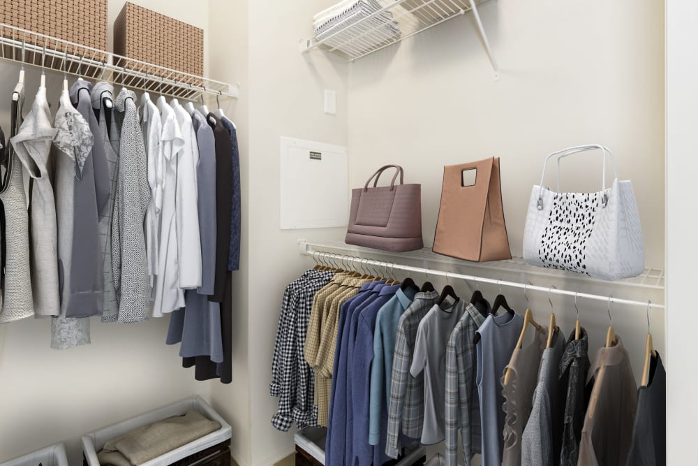walk-in-closet-in-raleigh-apartments