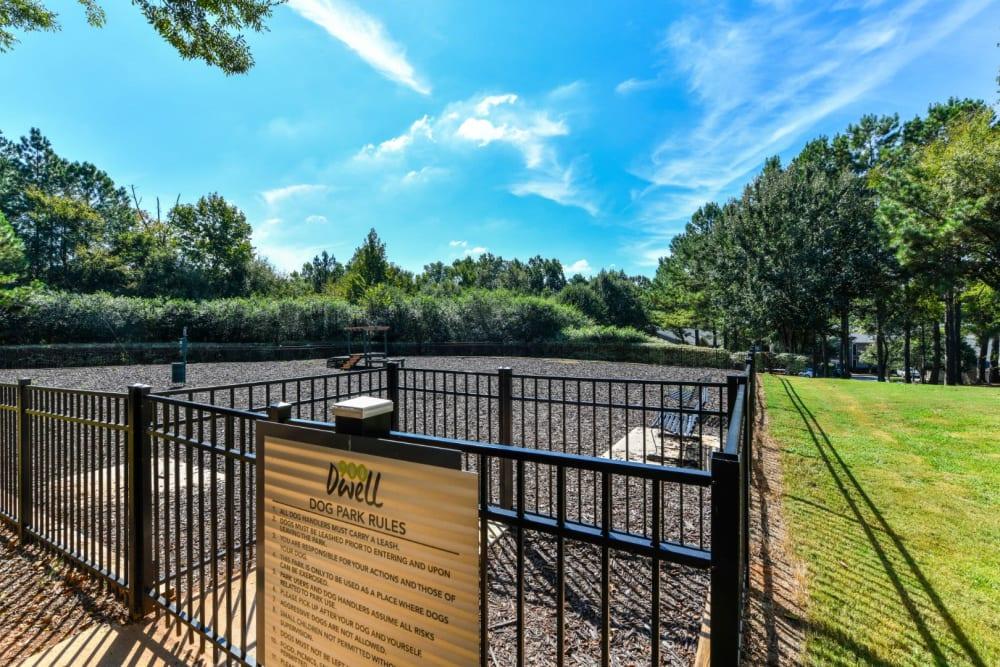 Outdoor dog park at 900 Dwell in Stockbridge, Georgia