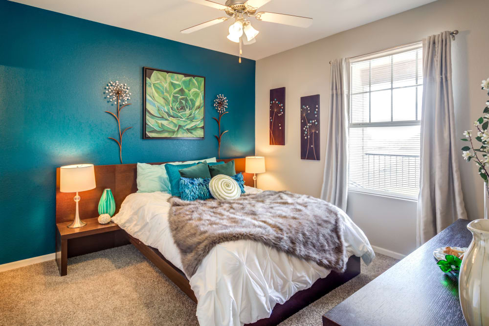 A large main bedroom with a ceiling fan and plush carpeting at Alvadora Apartments in Lawrence, Kansas