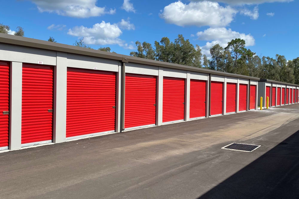 Units at Storage Authority Land O' Lakes in Land O' Lakes, Florida
