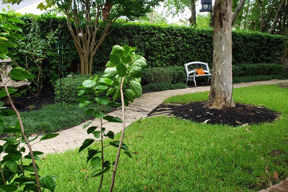 outdoor walking path with green grass and bench seating