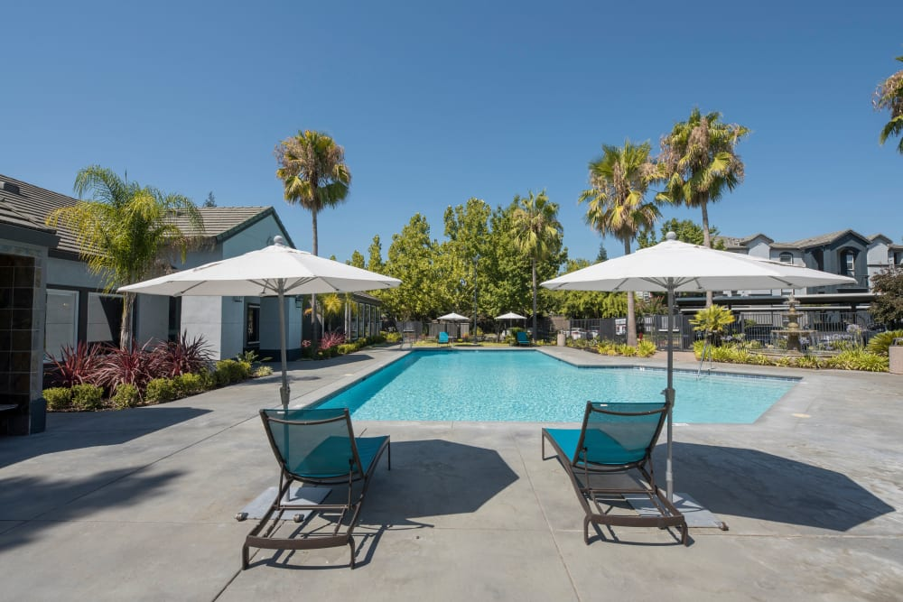 Beautiful resort-style swimming pool with lounge chairs at Avion Apartments in Rancho Cordova, California