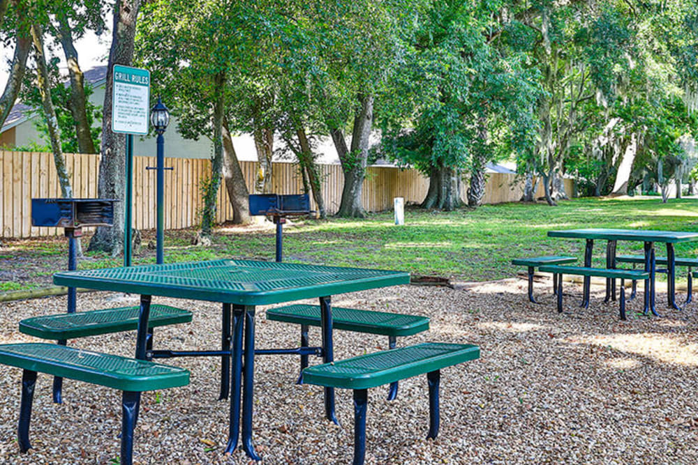 Picnic tables at Branchwood Apartments in Winter Park, Florida