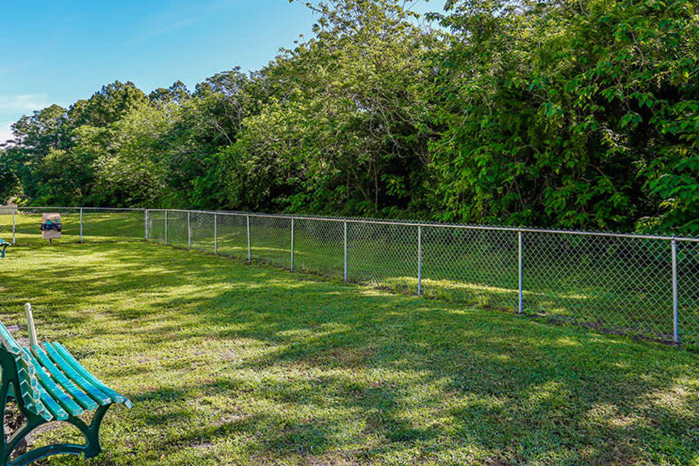 Large fully fenced bark park at Branchwood Apartments in Winter Park, Florida