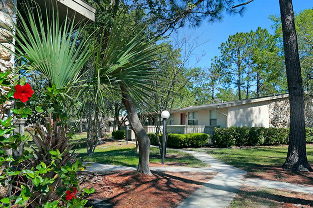 Beautiful courtyard at Kings Crossing Apartments in Jacksonville, Florida