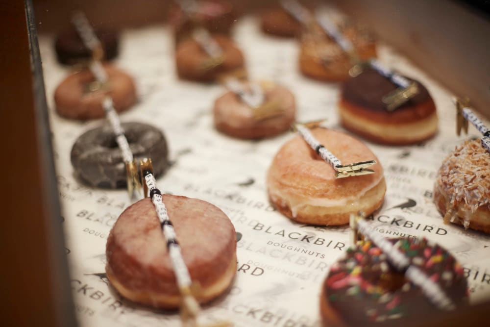 Delicious donuts in Allston, Massachusetts near Arthaus Apartments