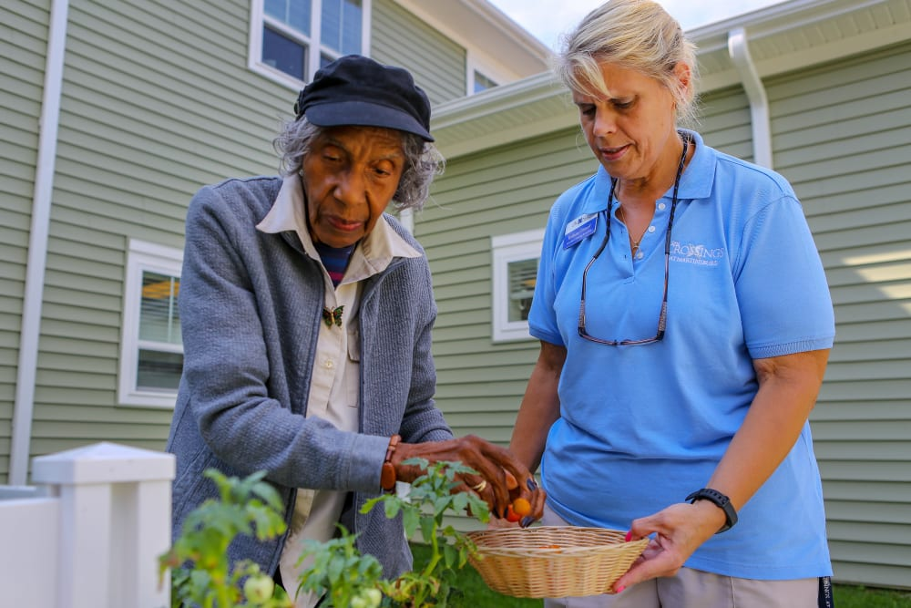 Harmony Senior Services Resident and Associate Gardening