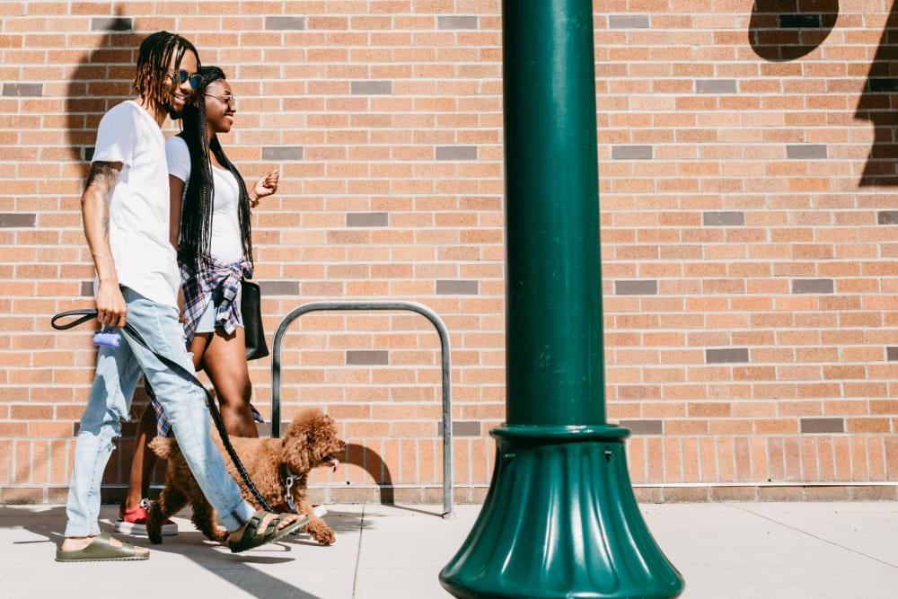 Residents walking their dog in Charleston, South Carolina near 511 Meeting