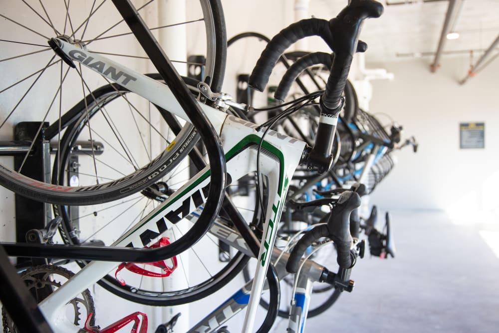 Bike storage at 511 Meeting in Charleston, South Carolina