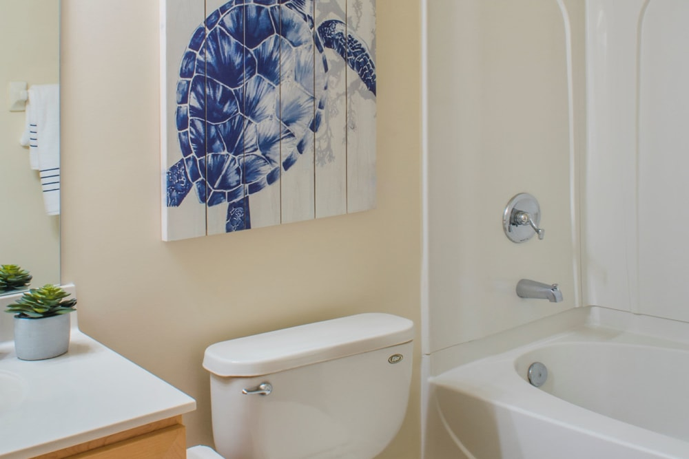 Bathroom with turtle painting behind toilet at Atkins Circle Apartments & Townhomes in Charlotte, North Carolina