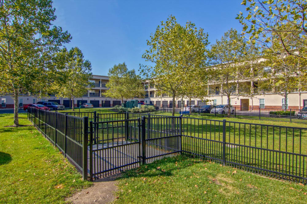 Dog park at Easton Commons Apartments & Townhomes in Columbus, Ohio