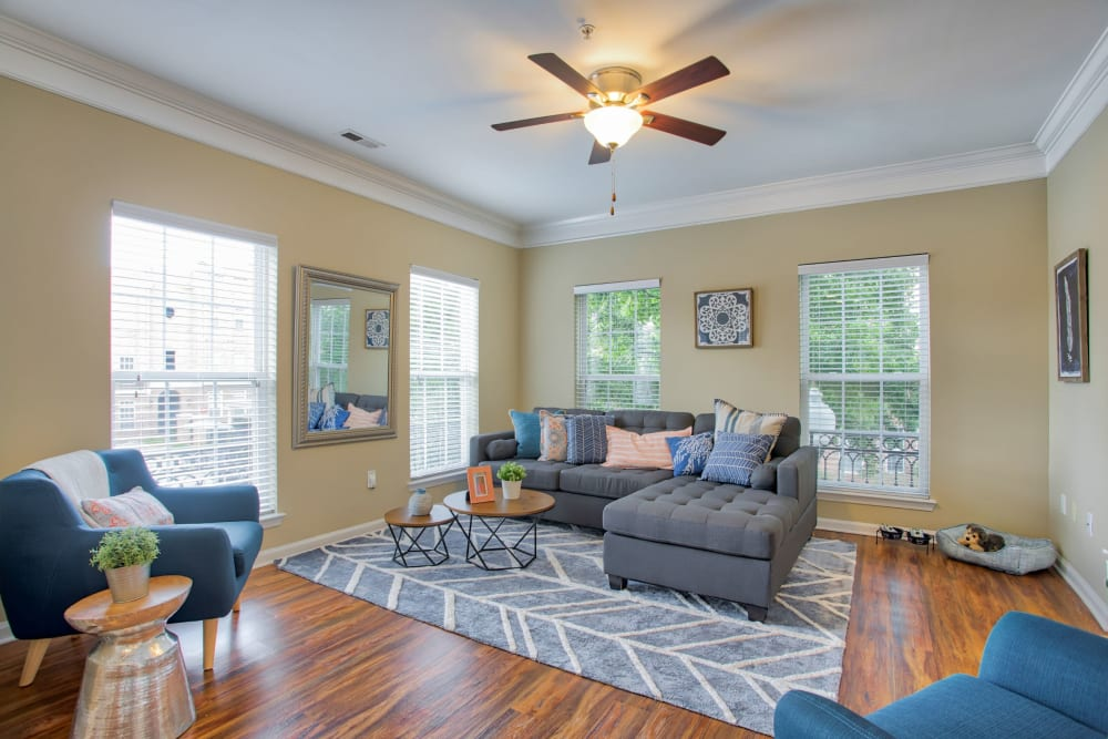 Very open living room with lots of windows for natural light at Worthington Apartments & Townhomes in Charlotte, North Carolina