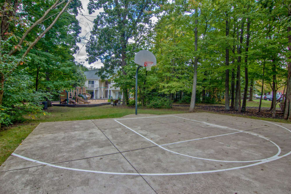 Basketball court surrounded by large trees at The Woods at Polaris Parkway Apartments & Townhomes in Westerville. Ohio