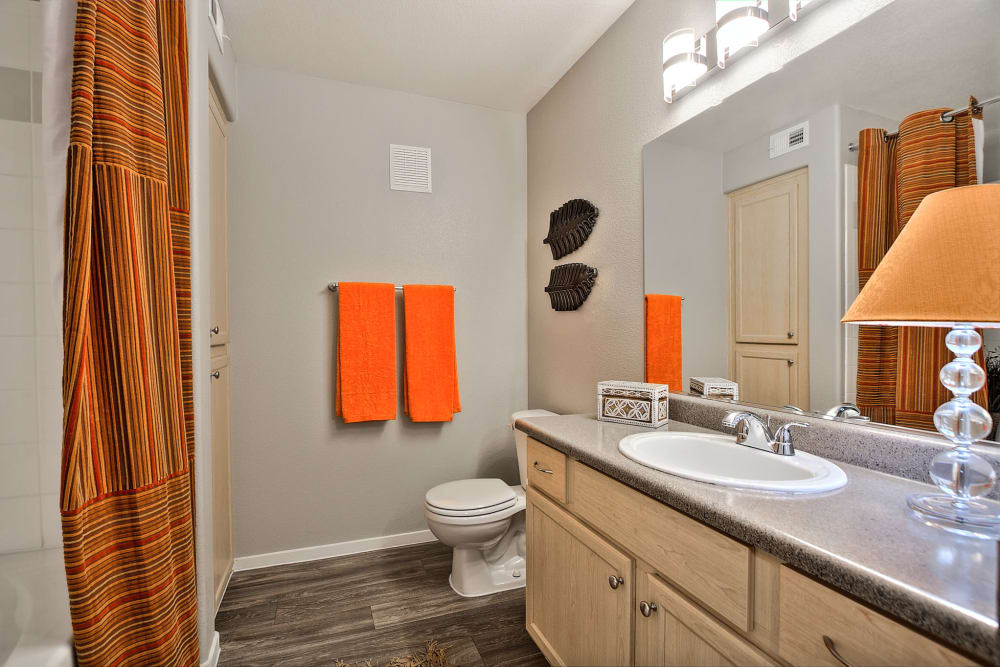 Bathroom at Cielo Apartment Homes in Henderson, Nevada
