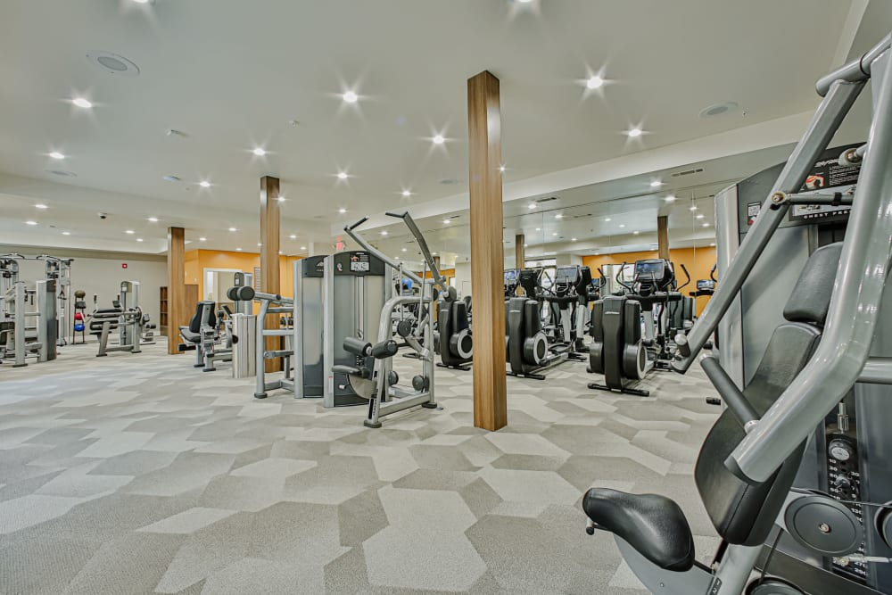 Ellipticals at the Gym at Broadstone Toscano in Houston, Texas