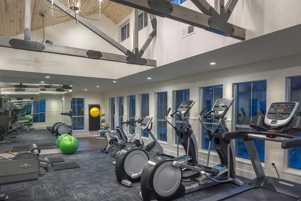 Gym Space With Elliptical Machines and more