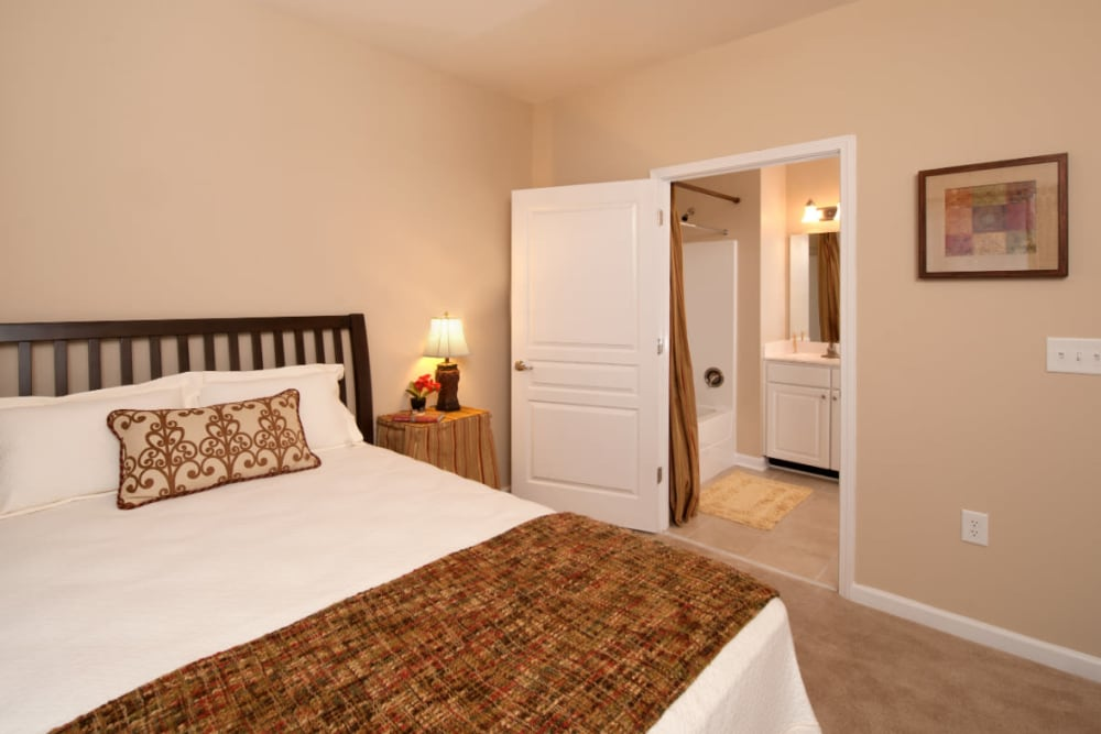 A main bedroom with plush carpeting at Meridian Watermark in North Chesterfield, Virginia