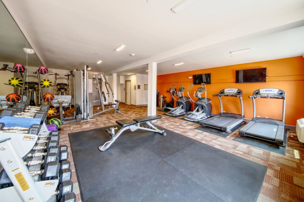 Fitness center at ONE23 Apartments in Union City, New Jersey