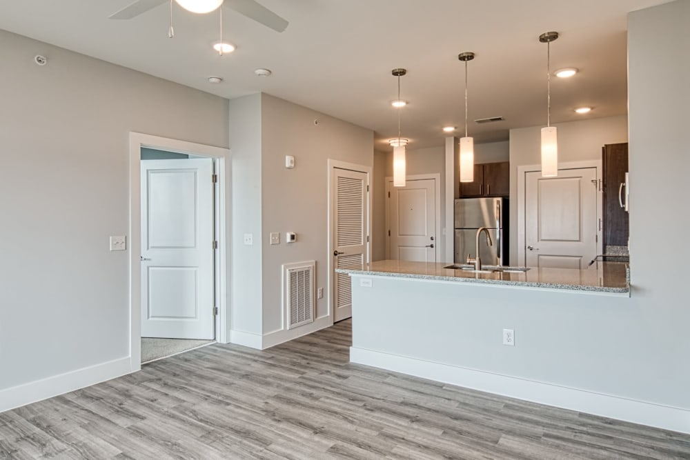 A modern kitchen with wood-style flooring