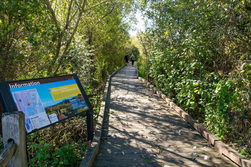 Walking trail near The Verge in Auburn, Washington