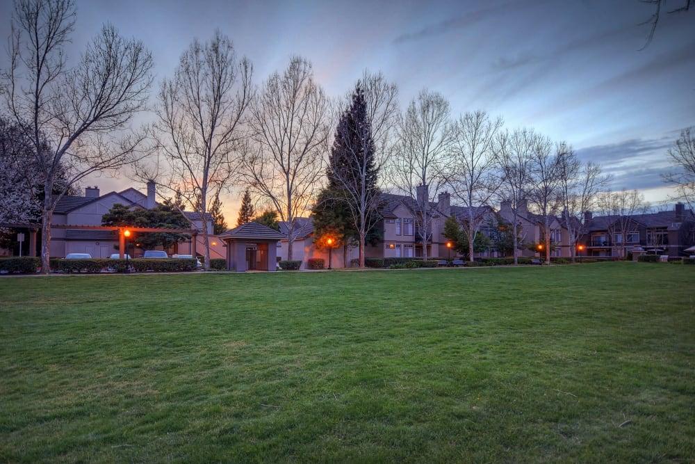 Street veiw of Larkspur Woods in Sacramento, California
