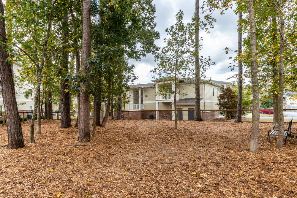 Dog park at Ansley Commons Apartment Homes in Ladson, South Carolina