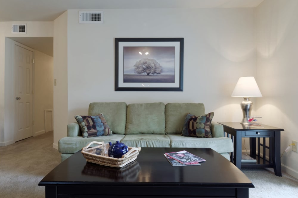 Comfortable couch at The Meadows at Elk Creek in Elkton, Maryland