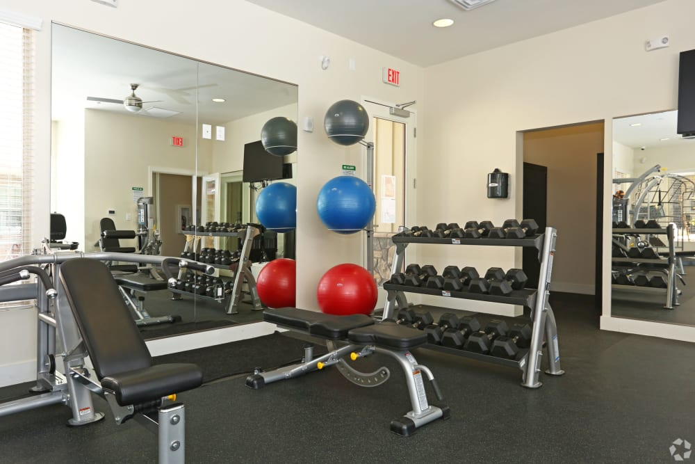 Large resident fitness room at Mountain Trail in Flagstaff, Arizona