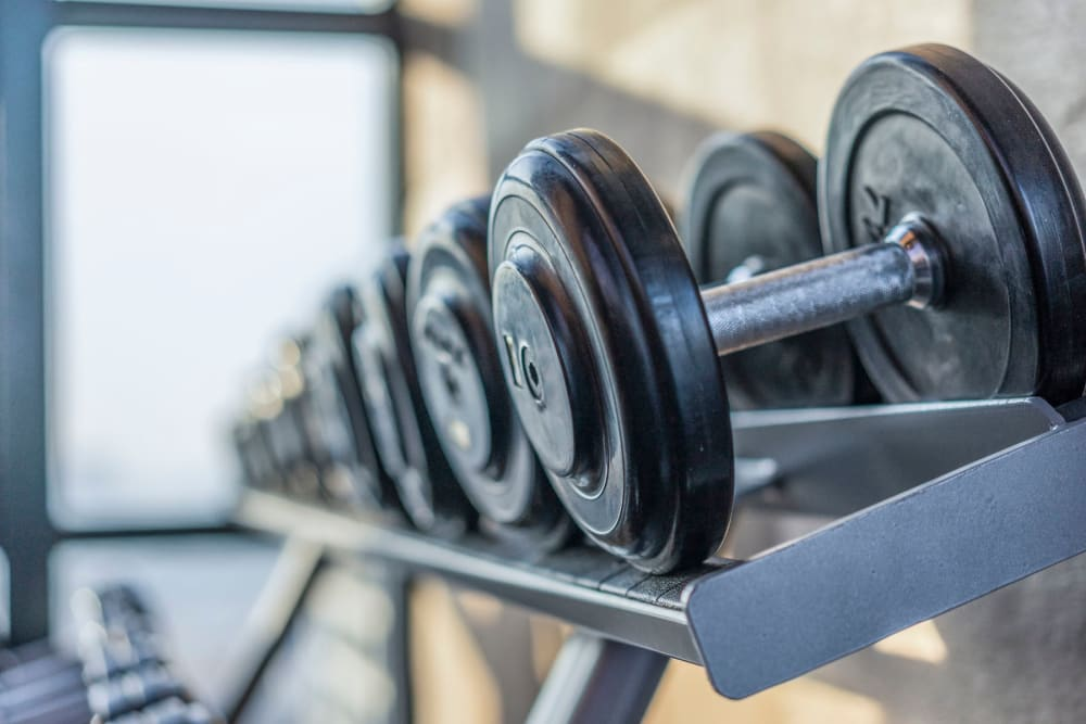 Weights in the fitness center at Park at Winterset Apartments in Owings Mills, Maryland