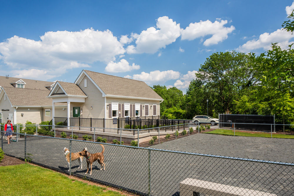 Dog park at The Grove Somerset in Somerset, New Jersey