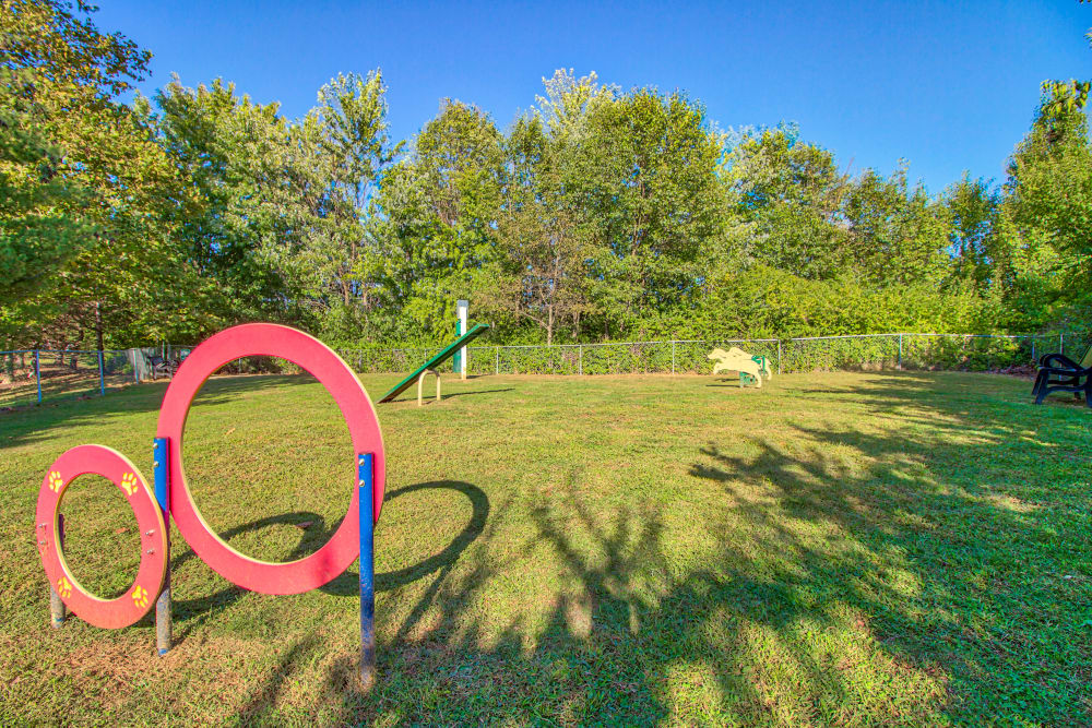 Dog Park at The Reserve at Ballenger Creek Apartments in Frederick , Maryland