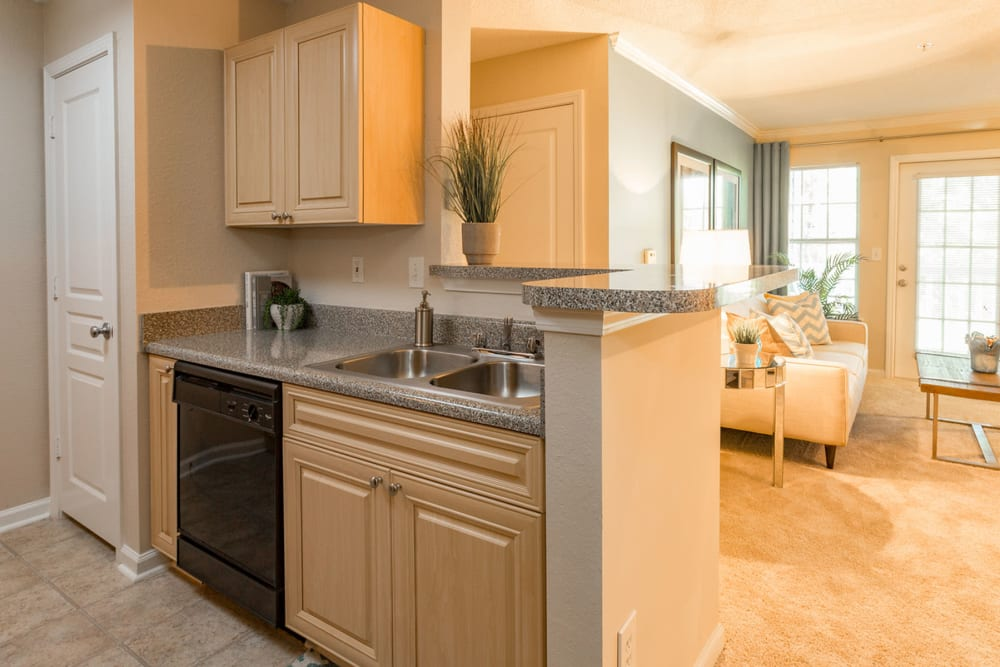Granite countertops and black appliances in a model home's kitchen at The Vinings at Newnan Lakes in Newnan, Georgia