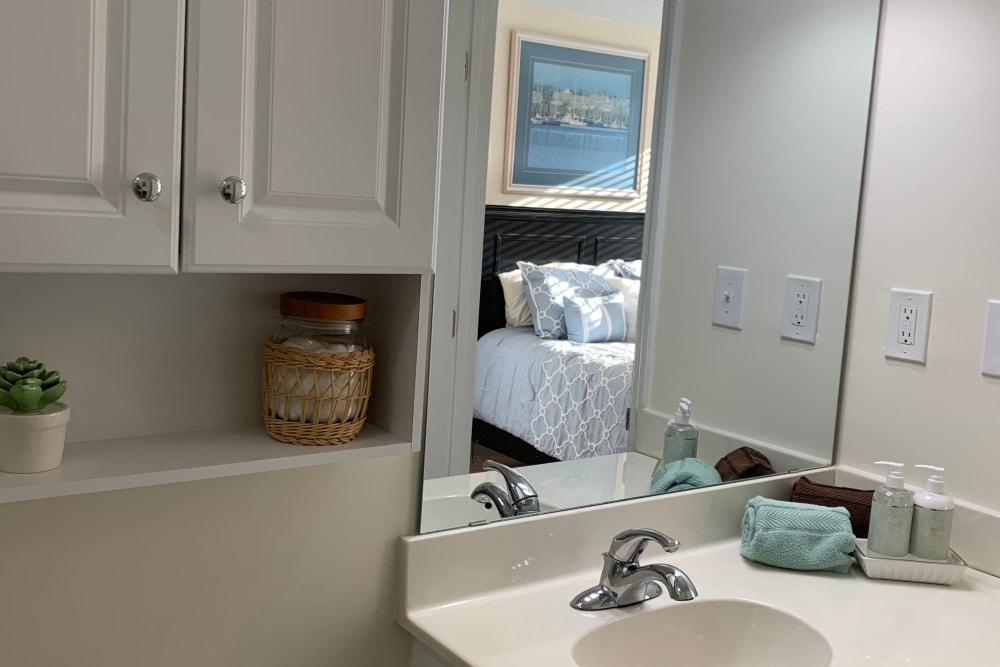 bathroom mirror and cabinet