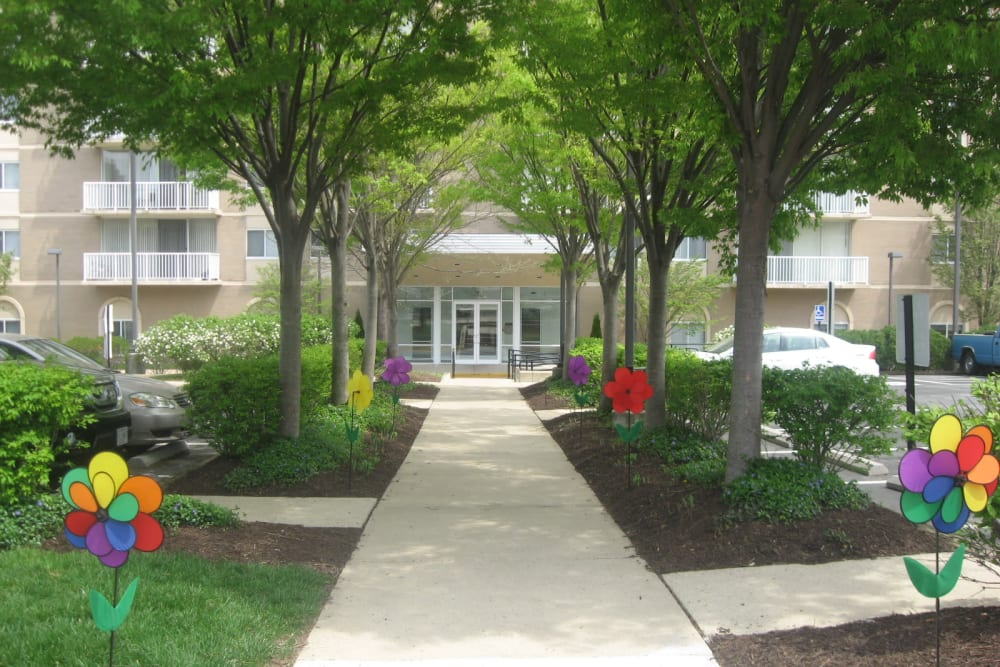 A forest walkway with lots of green vegetation at Westwood Tower Apartments in Bethesda, Maryland