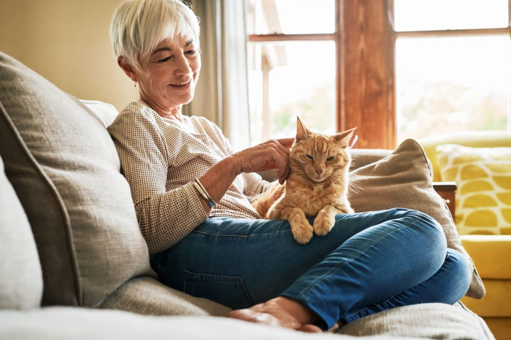 Resident sitting on her couch and petting her cat at Hilltop Commons Senior Living in Grass Valley, California
