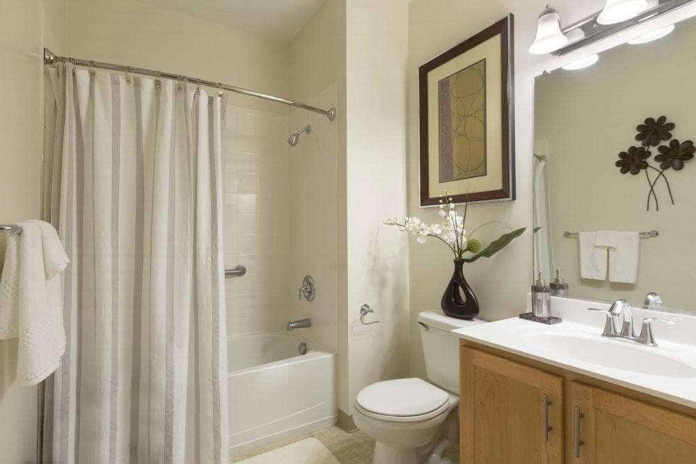 Walk-in shower at Regency Place in Wilmington, Massachusetts