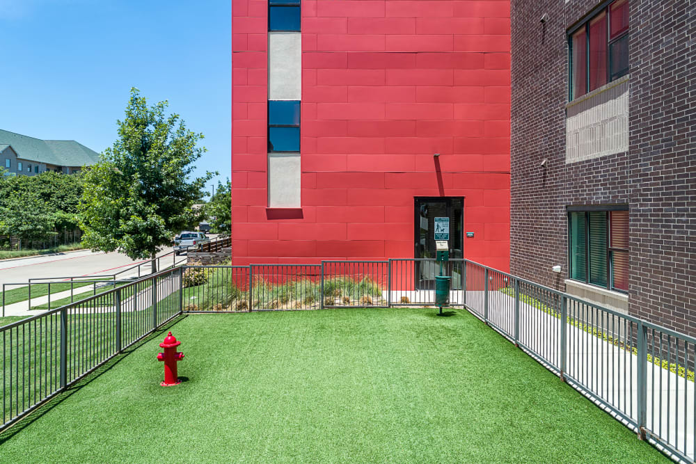 Gated Pet Park | Axis 3700 Apartments Plano, TX
